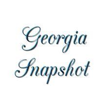 Georgia Snapshot